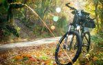 Приснился велосипед во сне — толкование по соннику