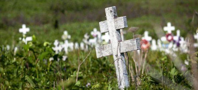 Приснилось кладбище во сне: к чему снится по соннику