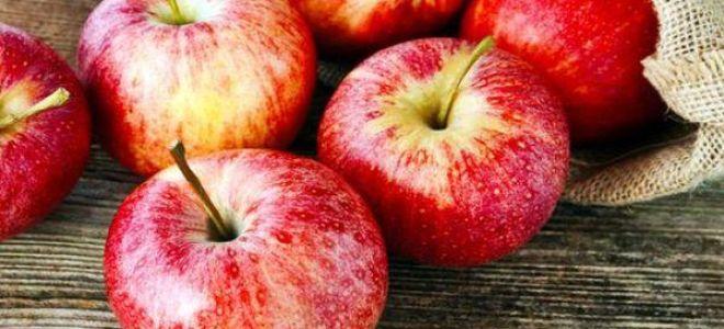 Сонник яблоки — к чему снятся женщине и мужчине