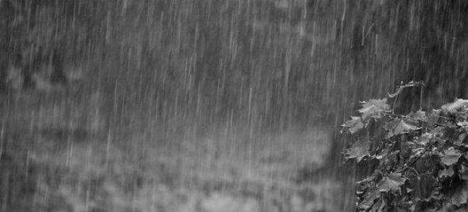 Приснился сильный ливень во сне: толкование и значение по соннику