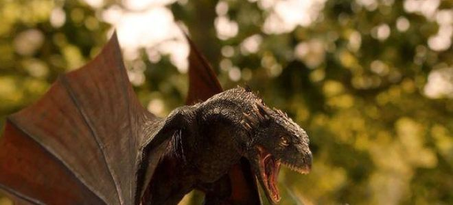 Сонник дракон во сне: к чему приснился и что значит?