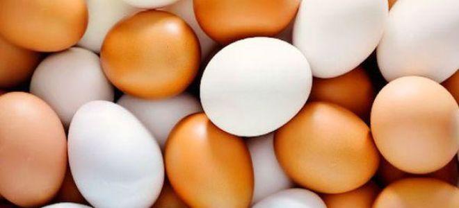 Видеть во сне яйца — толкование и значение по соннику