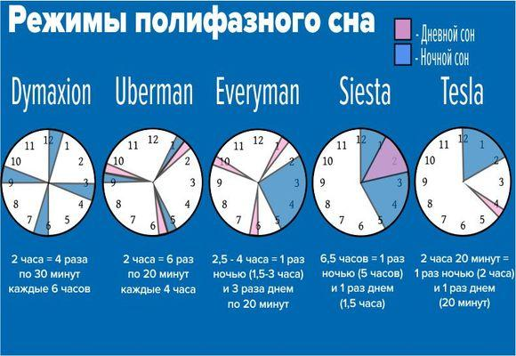 таблица двухфазного сна