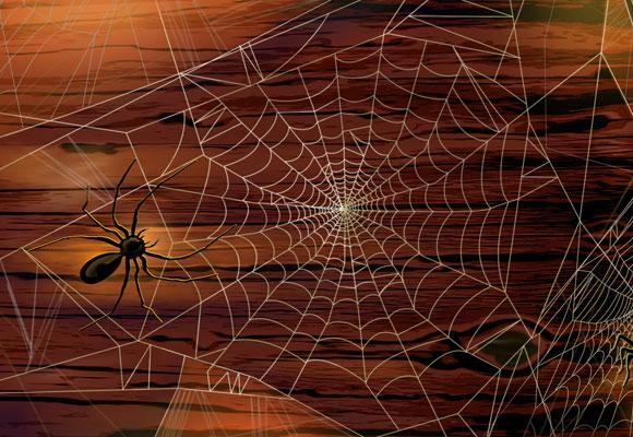 К чему снится паутина Сонник Миллера, что означает сон, в котором приснилось паутина — Мир космоса