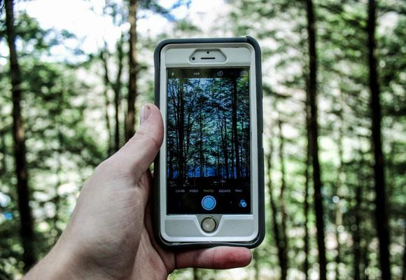 Фото природы на телефон