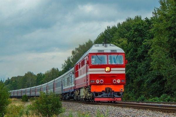 поезд в лесу