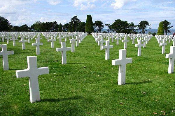 трава на кладбище