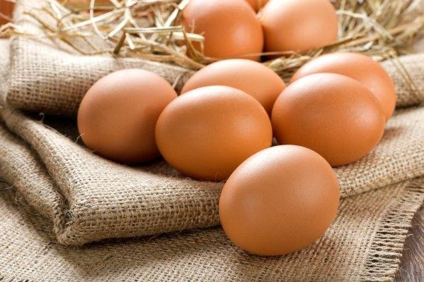 куриные яйца на мешке