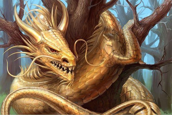 золотой дракон на дереве