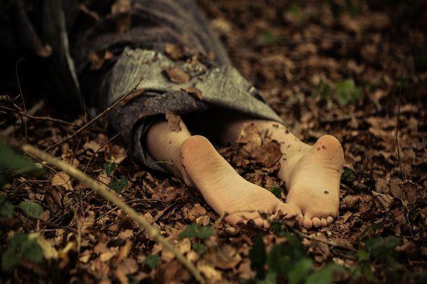 тело в лесу